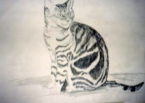 Cat painted from photograph in Florida 1988